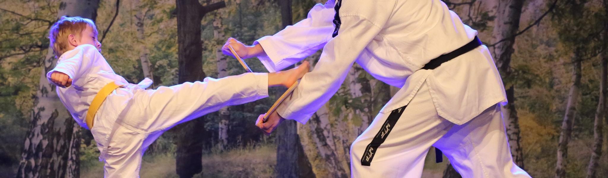Taekwon-Do1