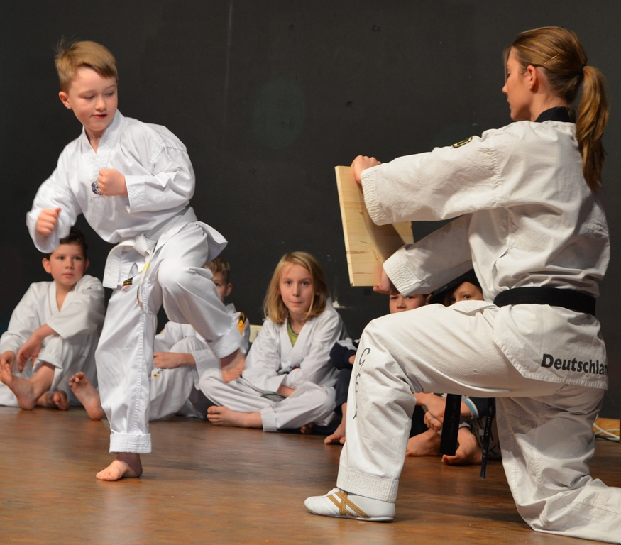 Taekwon-Do Einsteigerkurse Start Sept.2016